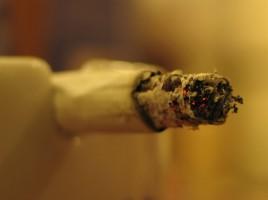 En alm. cigaret kan starte brande